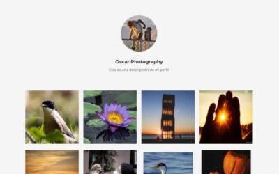 Cómo insertar un feed de instagram en tu sitio creado con divi sin plugins, sin token ni clave API