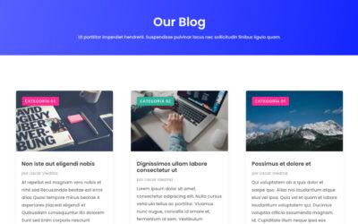 Cómo añadir etiquetas personalizadas de categorías en las entradas de nuestro blog en divi